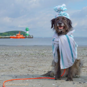 Lisa am Strand mit Rettungsleine und immer genug Handtüchern